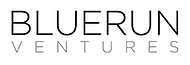 Blue-Run-Ventures